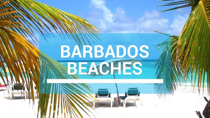 Barbados is home to many beautiful beaches but you may be surprised at the diversity around the island.
