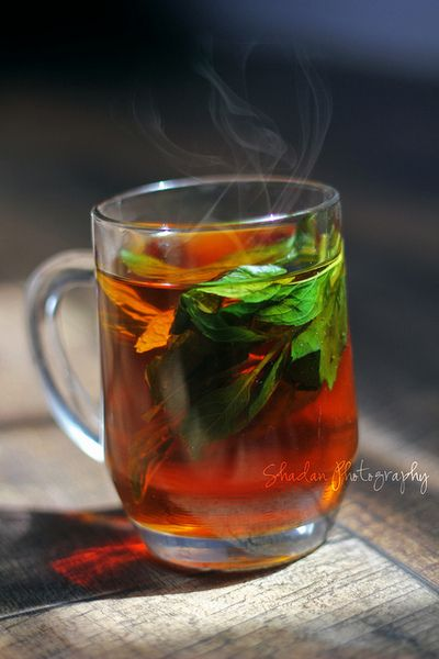 Tea | Shadan Photography
