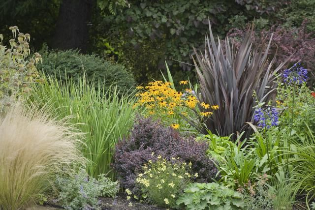 17 Best Images About Garden Ideas On Pinterest