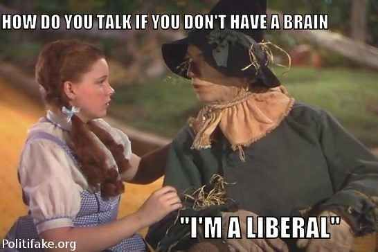 politics CONTROL THE LIBERAL POPULATION   Have all Liberals spayed or neutered. Trudeau Proves Stupid People Shouldn't Vote.