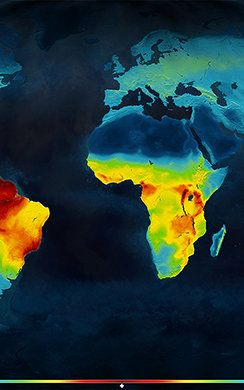 Mapping All Of The World's Animals, So We Know Where To Save Them  These maps show the levels of biodiversity down to an incredibly granular level, and hopefully can help conservationists get the most bang for their buck.