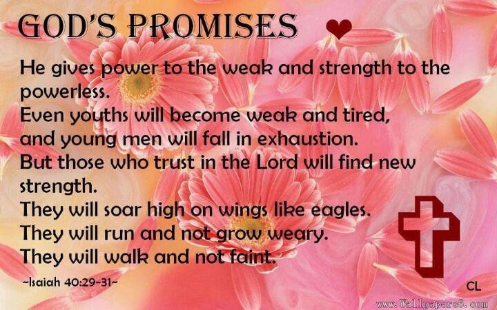 Isaiah 40:29-31 | Beautiful Bible Verses and Quotes | Pinterest ...