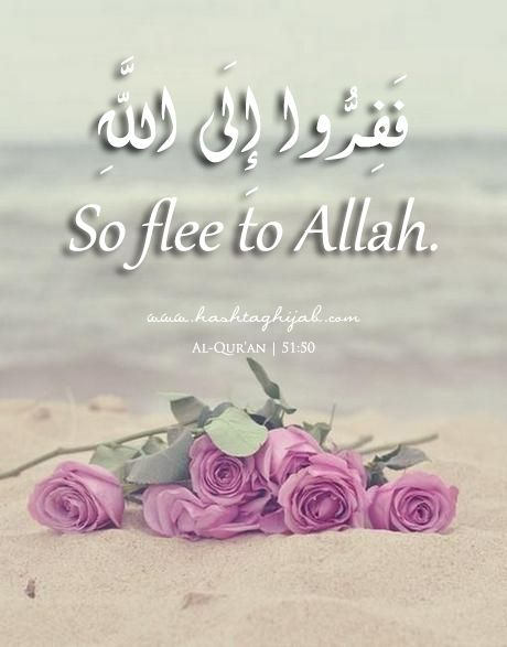 Islamic Daily: Flee