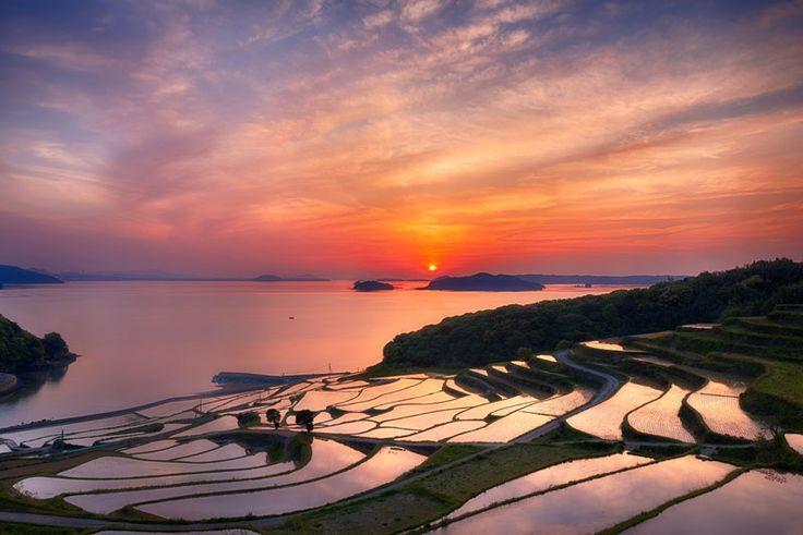 doya-rice-terrace-sunset-japan