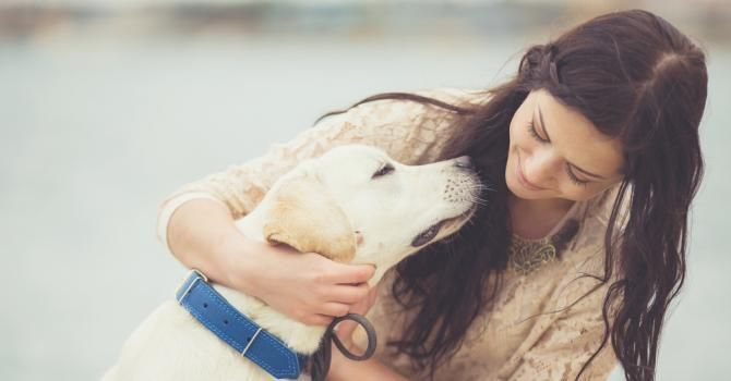 Quel animal adopter selon votre signe astrologique