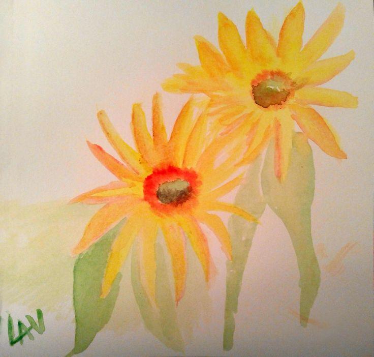 @lauraudiovisual Sunflowers