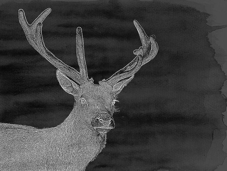 Charcoal Deer #canvas #charcoal-deer #deer #urban-road