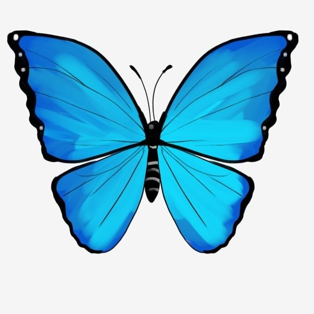 Illustration De Dessin Anime Papillon Bleu Insectes Clipart Cartoon Papillon Papillon Bleu Fichier Png Et Psd Pour Le Telechargement Libre Butterfly Illustration Cartoon Butterfly Blue Butterfly