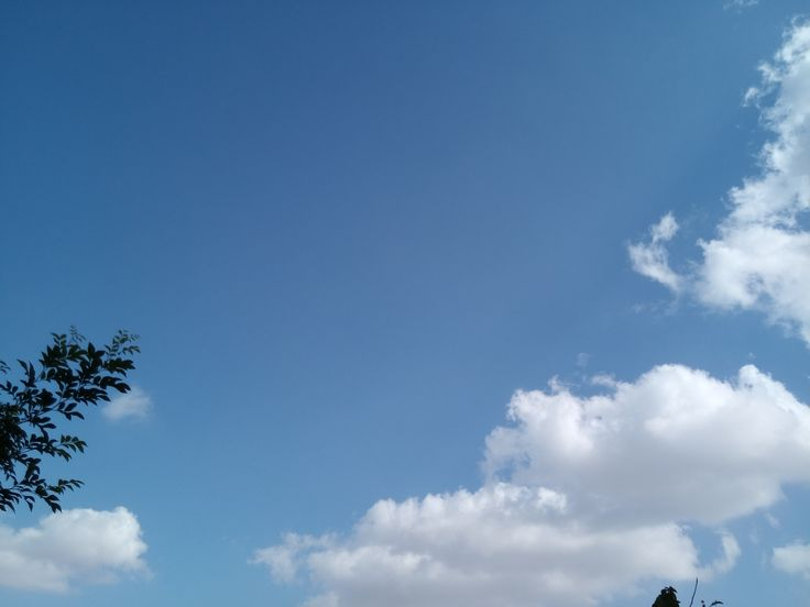 Clicked by YaHalla Alif Smartphone Camera #yahalla #alif #smartphone #camera #daylight www.yahalla.com