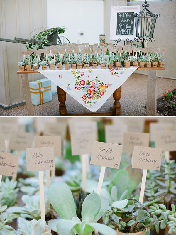 Fun Loving Backyard Wedding
