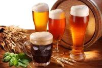Bier - Beitrag zur Gesundheit? - gesundheit.de