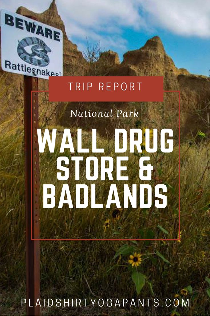 Have you ever heard of Wall Drug Store? It's a huge drug store where ou can get free ice water, five cent coffee, and the most delicious doughnuts ever. All on the way to Badlands National Park! Click to read more about Wall drugs and Badlands.