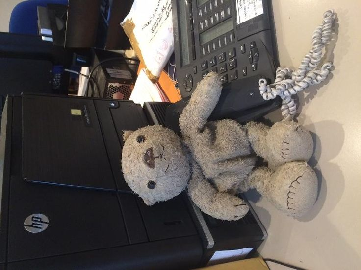 Found on 14 Aug. 2015 @ Paris . My daughter's beloved Teddy Bear Spencer has been found Thank you for all your support I will like to say a special Thank You to Emilie and The Staff at The Campanile Hotel Galleni and the ... Visit: https://whiteboomerang.com/lostteddy/msg/ezypm6 (Posted by Lavaughn on 15 Aug. 2015)