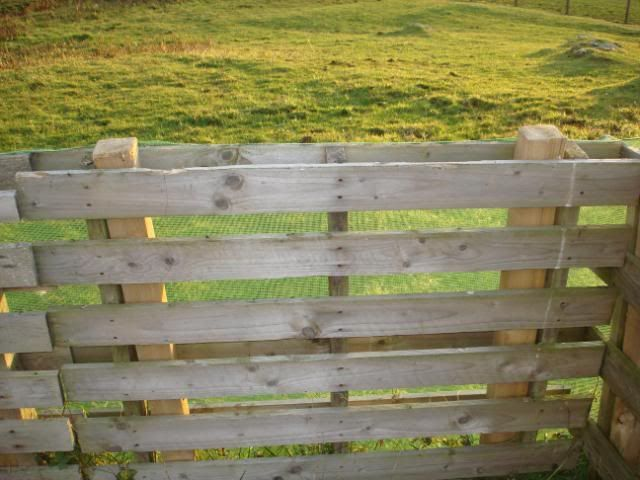 [ ~Pallets slipped over fence posts.  Simply Genius! ]