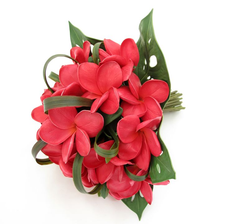 Red frangipani bouquet with dracaena loops and edged with mini monsteria leaves.