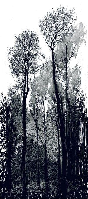 David Hockney ( B.1937) Tall Trees 2008
