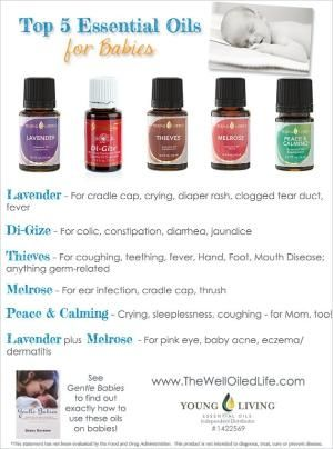 Top 5 Young Living Essential Oils for Babies! www.thewelloiledlife.com by hiidy