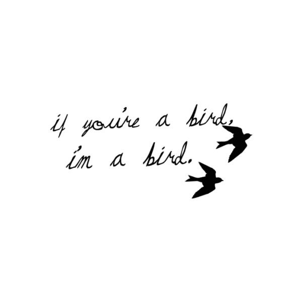 "The Notebook. ""If you're a bird, I'm a bird."" This quote would also be nice as a couple tattoo"