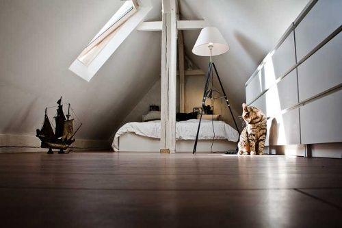 Fußboden Im Spitzboden ~ 60 besten dachboden bilder auf pinterest dachgeschosse dachausbau