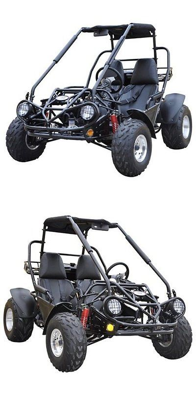 Complete Go-Karts and Frames 64656: Dune Buggy Automatic Go Kart Hydraulic Brakes Reverse-Driveline Outdoor Kids BUY IT NOW ONLY: $3095.98