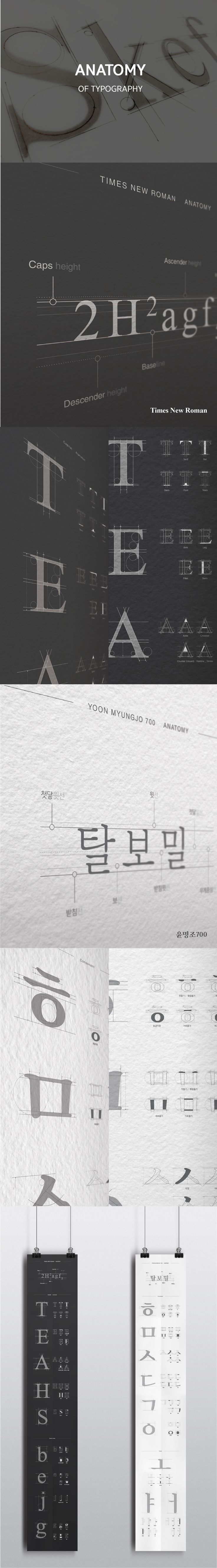 김나은│ Typography Design 2015│ Major in Digital Media Design│#hicoda │hicoda.hongik.ac.kr