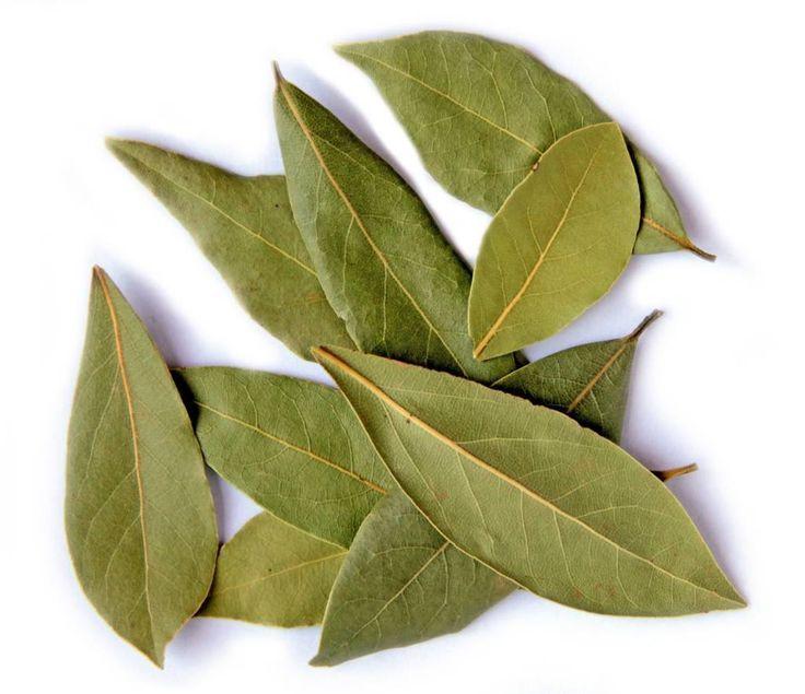 OČISTA KLOUBŮ OD SOLÍ A USAZENIN. Vaříme asi 5 g bobkového listu ve 3 dcl vody…
