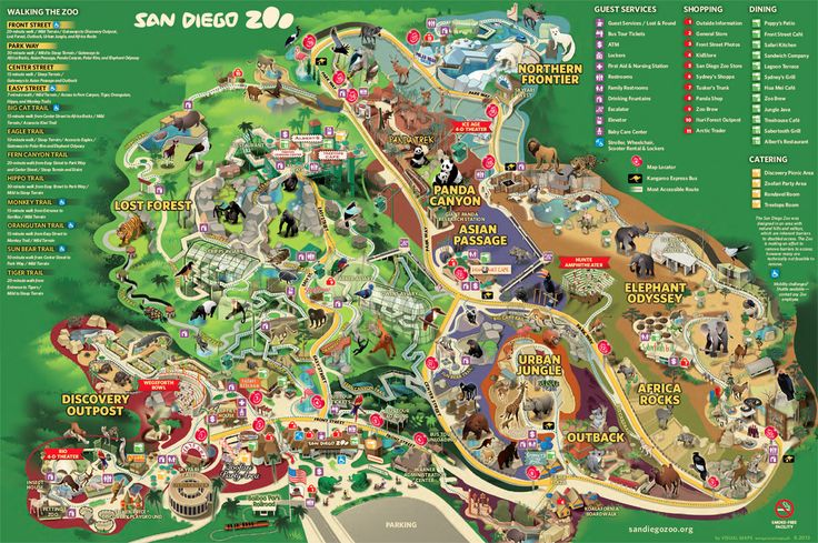 I've heard about the San Diego Zoo and the koala exhibit! Need to go there sometime soon!