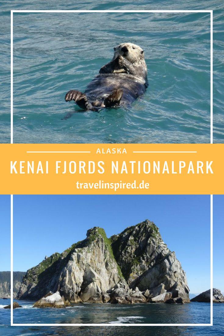 Im Kenai Fjords Nationalpark gibt es neben der beeindruckenden Landschaft aus Fjorden und Gletschern auch viele Tiere wie Wale, Seehunde, Seelöwen, Otter und Puffins zu entdecken. Ein absolutes Highlight unserer Alaska Rundreise im Truck Camper!