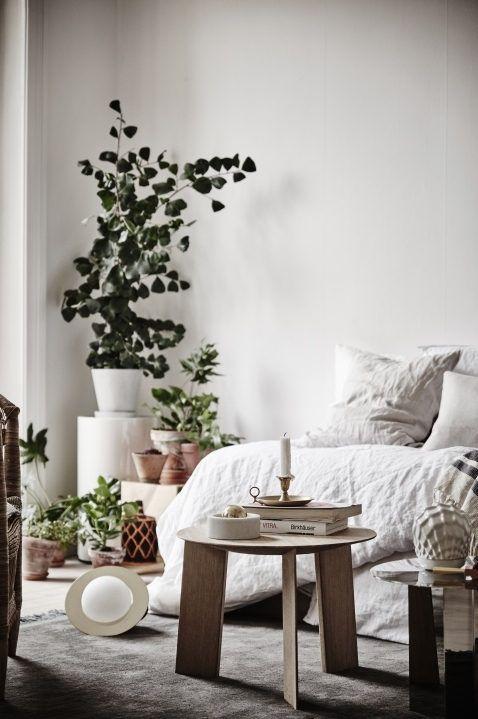 alquimia deco: Un sereno apartamento