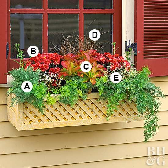 Exotic Container Homes: Fall Window Boxes, Fall Container Gardens