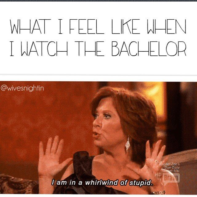 What I feel like when I watch The Bachelor Funny The Bachelor, TV, Real Housewives