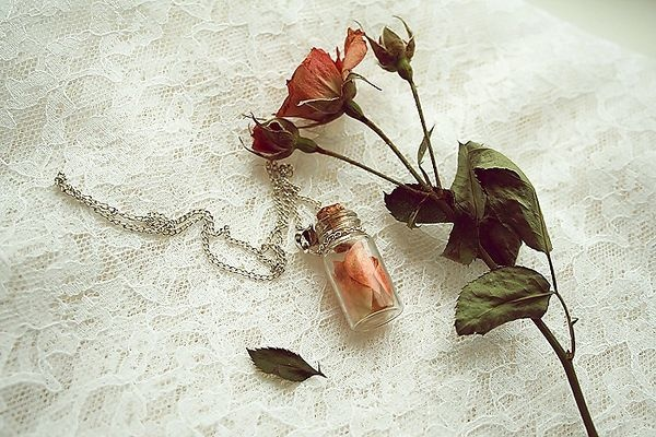 ]: Enchanted Rose, Wedding, Hailey Pin, Funeral, Beautiful, Nice Pin, I'M, Random Pin, Love Spelling