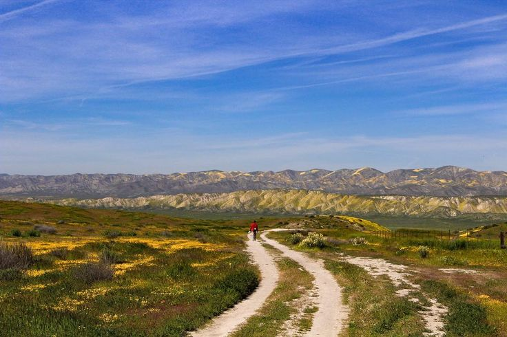 Apr. 1, 2017 Carrizo Plain  by light_wrangler The shorter range of hills in the distance is where you can find the San Andreas fault.