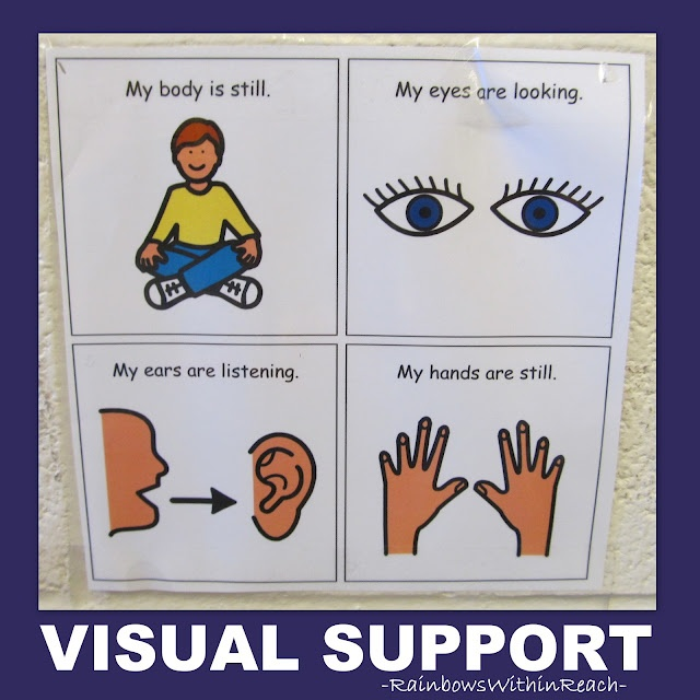 WELCOME to my ROUNDUP of all things VISUAL!  VISUAL CUES!! VISUAL PROMPTS! VISUAL SCHEDULES!!!