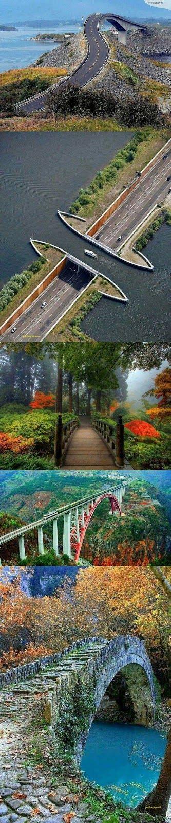 Top 5 Amazing Pictures Of Bridges