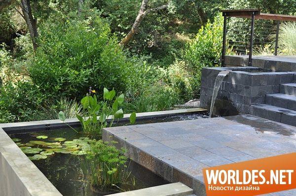 Впечатляющие садовые пруды фото 4