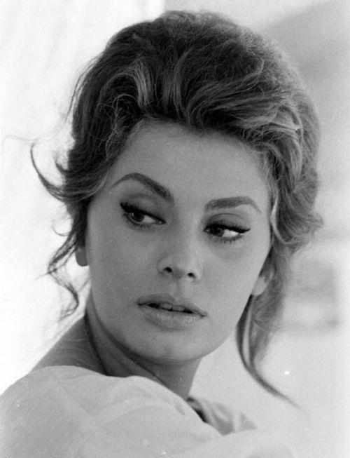 108 best Sophia Loren images on Pinterest Beautiful  : a01789a4de2956cfe66431c9077b1696 sofia loren most beautiful women from www.pinterest.com size 500 x 653 jpeg 35kB