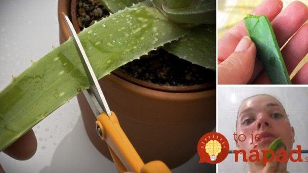 TOTO dokáže list Aloe vera za 15 minút. Stačí, ak si ho priložíte na tvár!