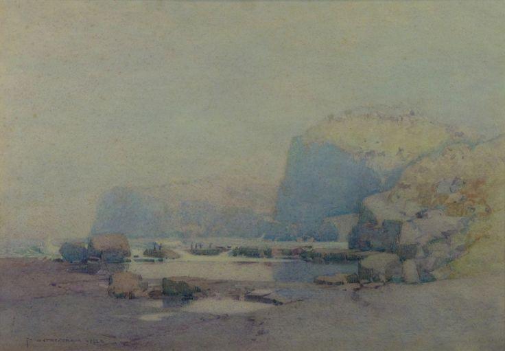 South_coast_rock_platform_with_penguins_1922.jpg (3955×2750)