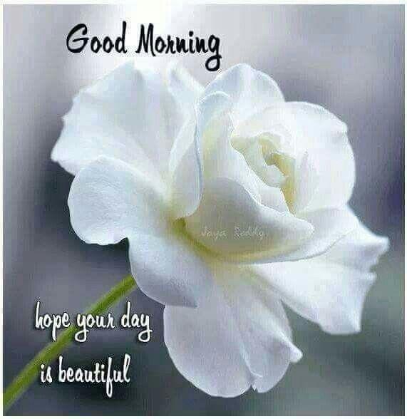 +++ 160923 +++ ... Good morning