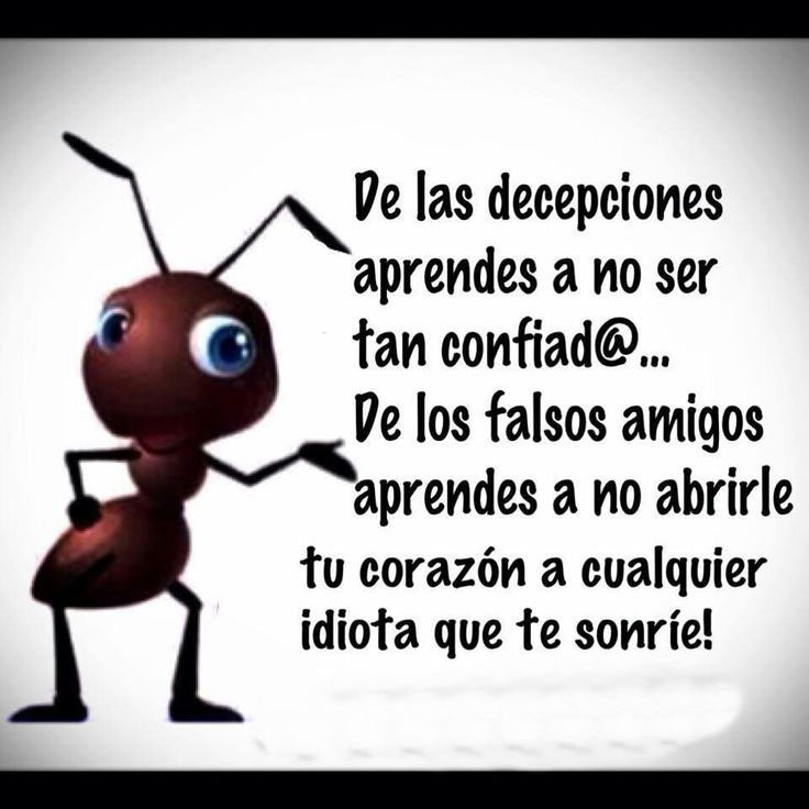 reflexiones/amigos/falsos - Google Search