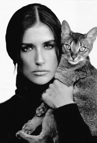 Gorgeous cat seen here with Demi Moore.