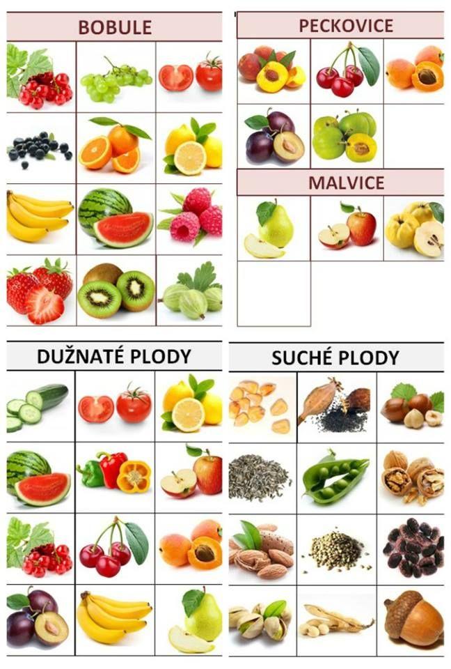 Soubor obsahuje kartičky na třídění: suché a dužnaté plody; a kartičky na…