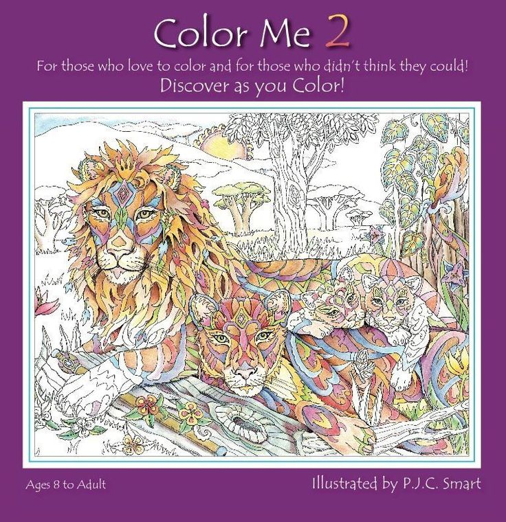 Color Me Your Way Coloring Book 2 By Pamela J Smart NEW SEALED In