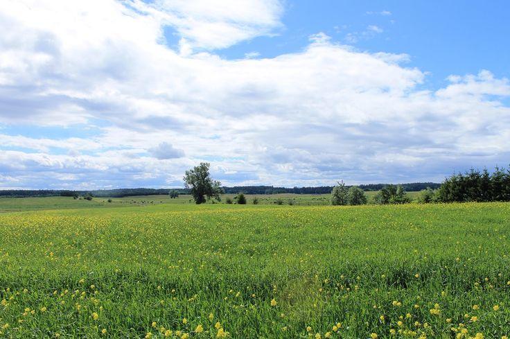 Źródło: www.it.mragowo.pl