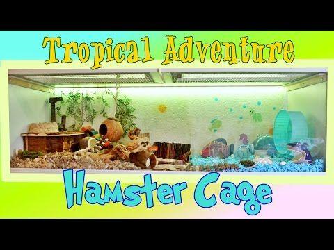 661 best images about hamster stuff on pinterest for Hamster bin cage tutorial