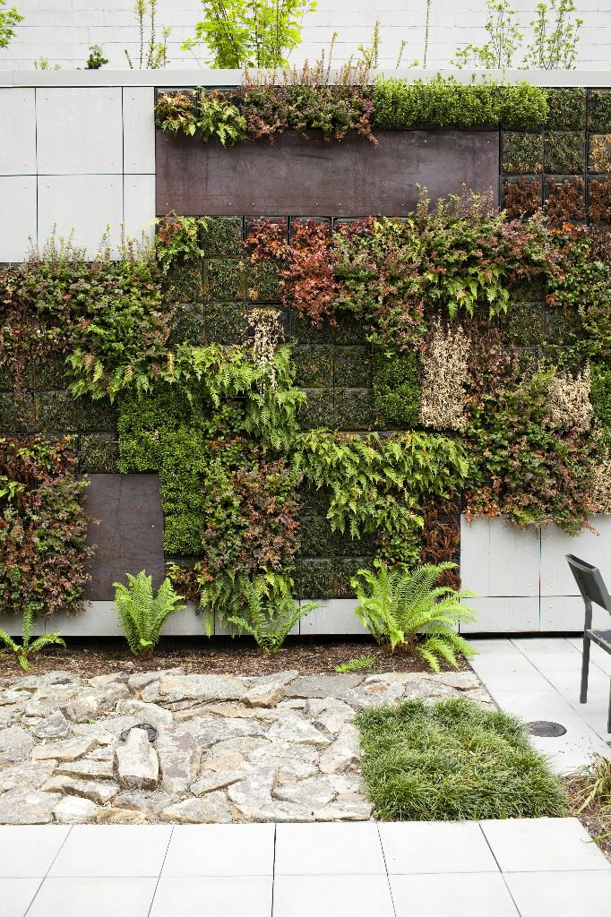 Living wall with drought resistant plants... provides insulation (keeps the house warmer in the winter and cooler in the summer).