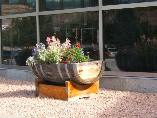 Barrel Gardening