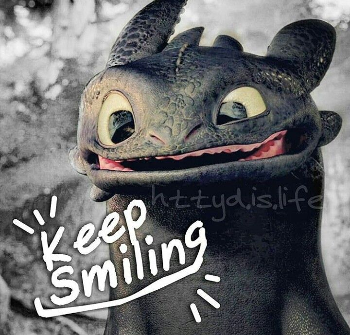 Keep smiling. Toothless from How to Train Your Dragon