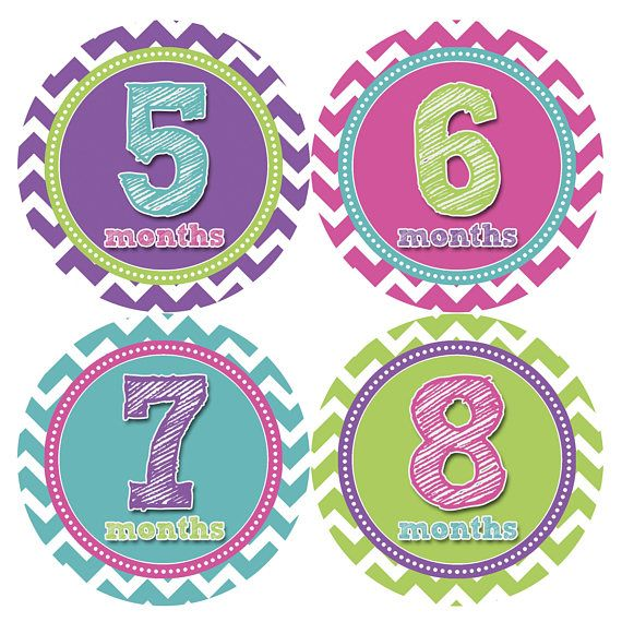 Monthly Baby Stickers Baby Month Stickers Baby Girl Month